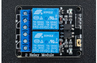 Module with relay, 2-channel